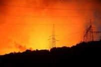 TÜRKİYEDE ORMAN YANGINI - Termik santralden iyi haber!