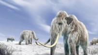 Bilim insanları, 4 bin yıl önceki mamutları geri getirecek