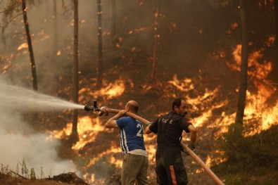 Bakan Kurum'dan orman yangınları ile ilgili önemli açıklama: İhalelerini tamamladık...
