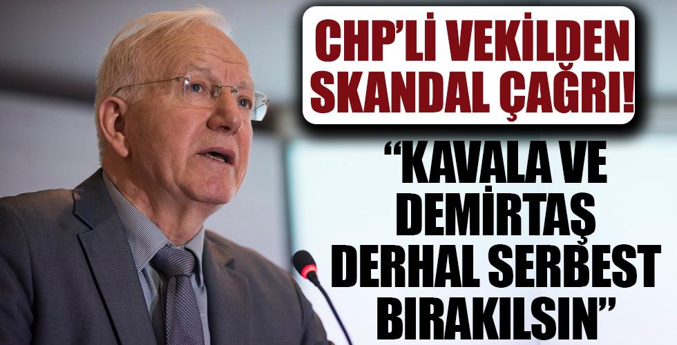 CHP'li İbrahim Kaboğlu: Kavala ve Demirtaş'ı derhal serbest bırakın