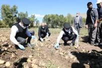 Vali Memis Ile Belediye Baskani Sekmen Kasket Takip Yelek Giyerek Patates Hasadi Yapti