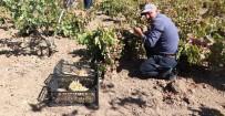 Siirtli Çiftçiler Devlet Destegiyle Pestil Yapmaya Basladi