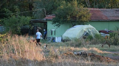 Kırmızı alarm: Kan emen sinek bulaştırdı, 8 köyde 'mavi dil' karantinası başlatıldı