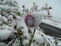 Posof'a Mevsimin Ilk Kari Yagdi