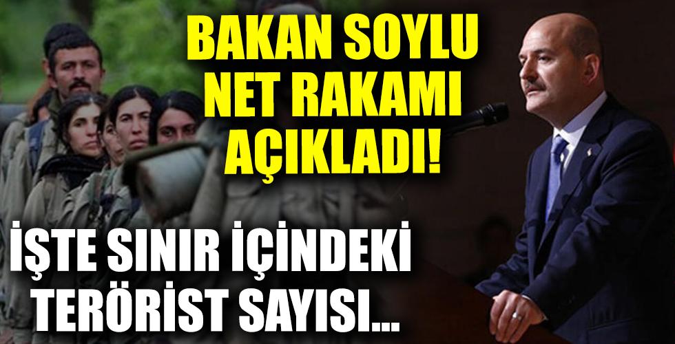 İçişleri Bakanı Süleyman Soylu sınır içindeki terörist sayısını net rakam vererek duyurdu