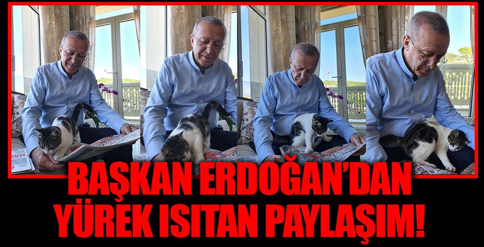 Başkan Erdoğan'dan yürek ısıtan paylaşım