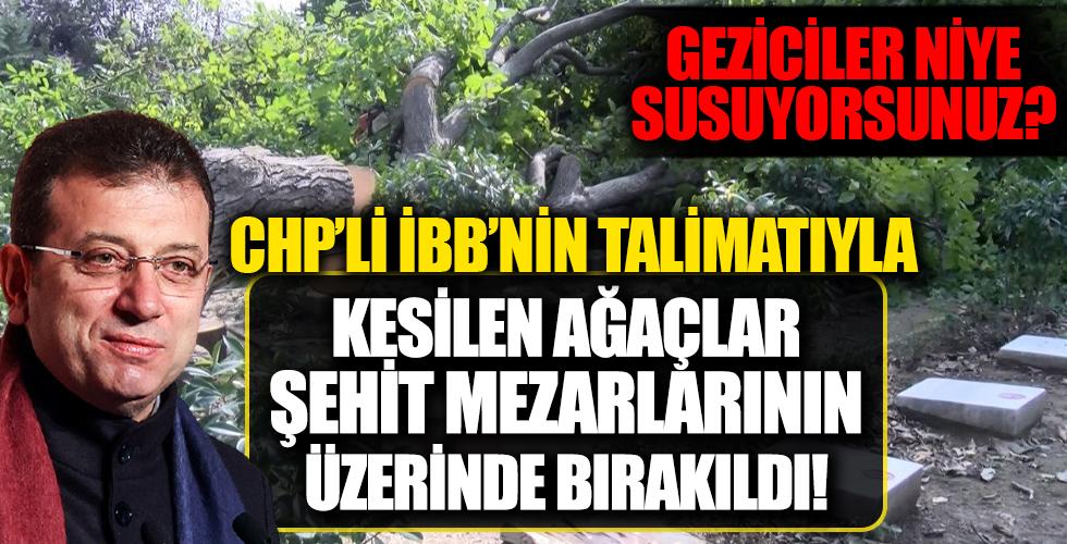 Geziciler niye susuyorsunuz? CHP'li İBB'nin kestiği ağaçlar şehit mezarlıklarına düştü!