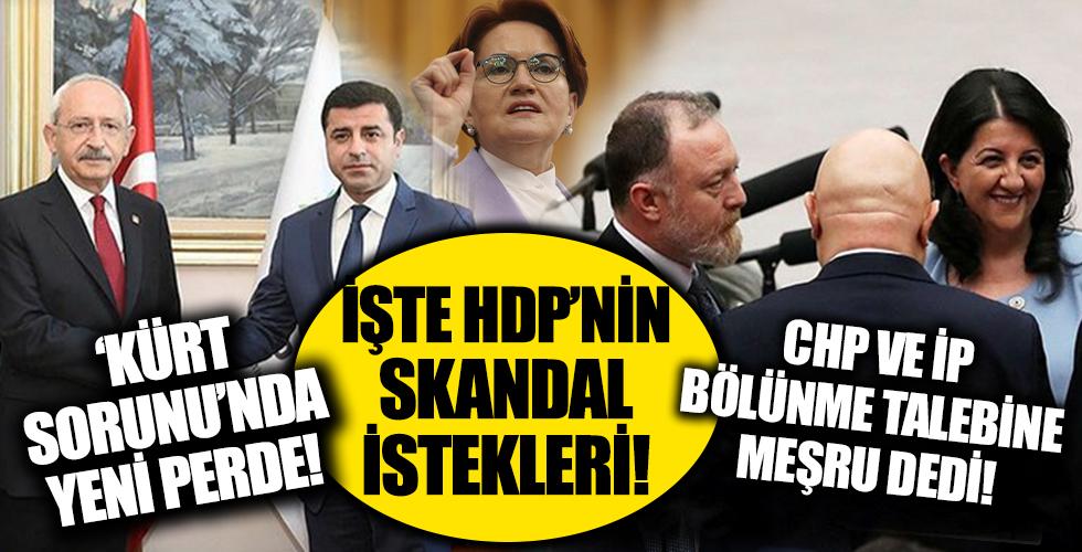 'Kürt sorunu' tartışmasında son perde! CHP ve İYİ Parti HDP'nin bölünme talebine meşru dedi! İşte HDP'nin skandal istekleri