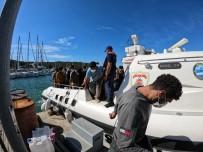 Izmir Açiklarinda Düzensiz Göçmen Hareketliligi